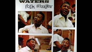 Folk Singer [1964] - Muddy Waters
