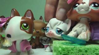 Littlest Pet Shop: Brush or Else! The Key to a Successful Date