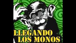llegando los monos  -San Canuto