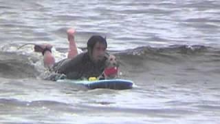 WAN SHONANDAY ドッグサーフィンの2010年 第一戦。 仲良し4WANでサーフ...