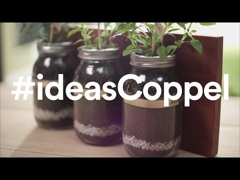 Aprende cómo hacer un jardín vertical | Coppel