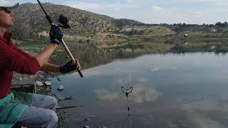 Карась осенью На Кипре Фидер Часть первая