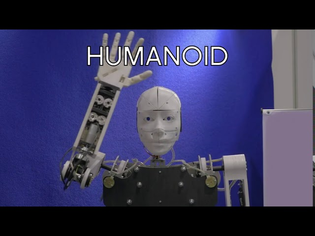 Humanoid (extract)