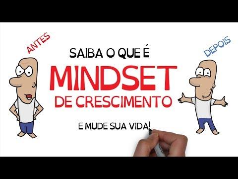 Livro MINDSET, A Nova Psicologia do SUCESSO   Seja Uma Pessoa Melhor