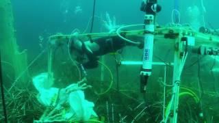 Méditerranée 2100 : vers une acidité record ? - eFOCE teaser