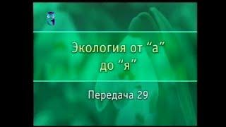 Экология. Передача 29. Изменения в биоценозах. Что такое флуктуация?