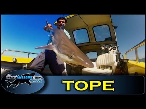 Tope Fishing - Ep.10 - Series 3 - Totally Awesome Fishing