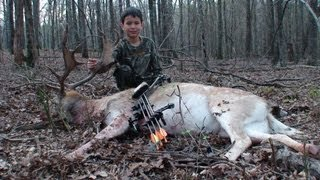 8 year old ARROWS Fallow Deer in Texas  A-1 Archery perfect sh…