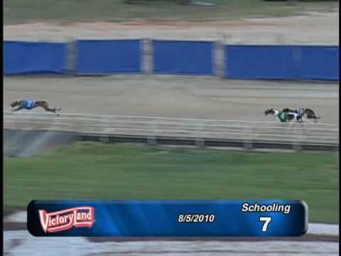 Victoryland 08/05/10 Schooling Race 7