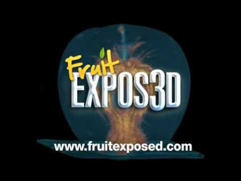 Fruit Expos3D Application