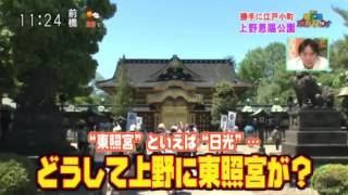 上野恩賜公園 途中からの映像となり、誠に申し訳ありません。