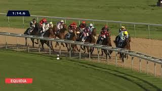 Vidéo de la course PMU PRIX DU PONT DE LA PIERRE