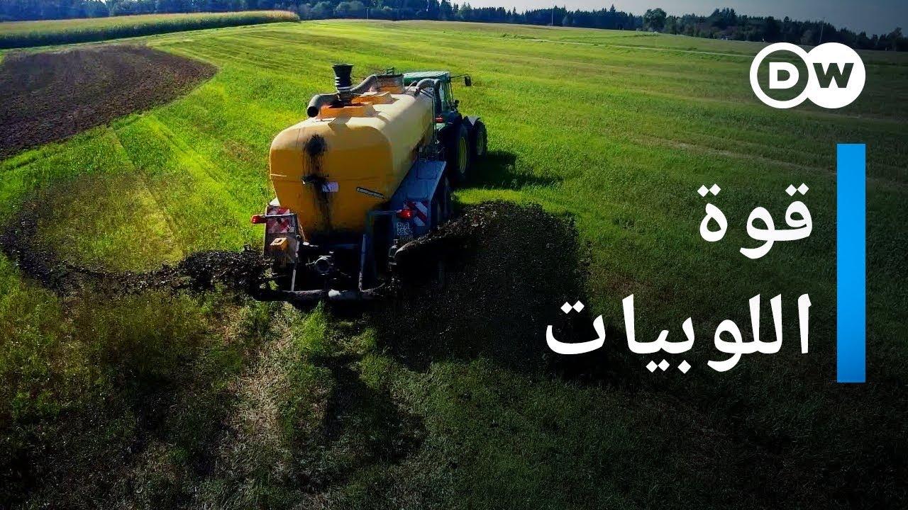 اللوبي  الزراعي: السياسة الزراعية بين الشركات وجماعات الضغط | وثائقية دي دبليو – وثائقي بيئة