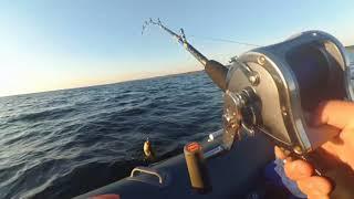 Тріска і Бики у Малиннику в день ВМФ! Рибалка в Білому морі!