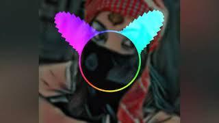 FL Studio Remake Capital Bra  Kennzeichen BTK AMIT DROPS