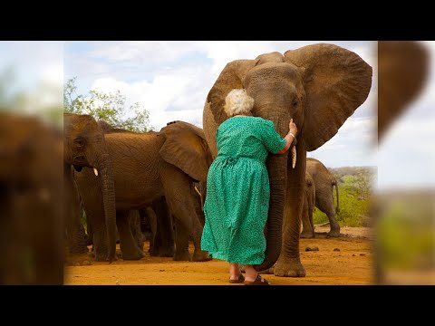 Многие слоны выстраивались в очередь, чтобы обнять эту женщину, но почему...