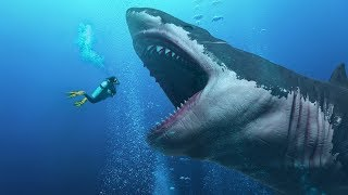 ¿Encontraron un Tiburón Megalodon vivo en la fosa de las Marianas?