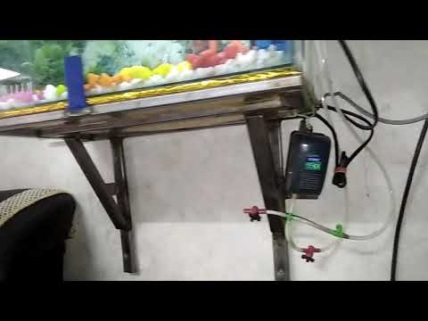 Small fish tank decorations, new stand fitted wall, small aquarium decorations, easy clean ,