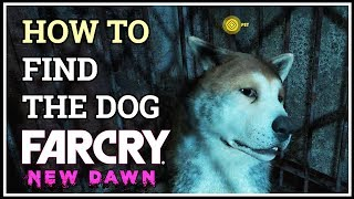 How to Find the Dog Man Eat Dog World Far Cry New Dawn