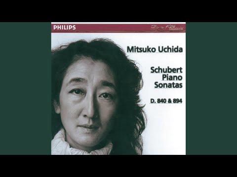 Schubert: Piano Sonata No.18 in G, D.894 - 3. Menuetto (Allegro moderato)