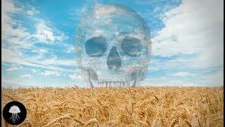 La pire erreur de l'humanité (l'agriculture) - DBY #55 thumbnail