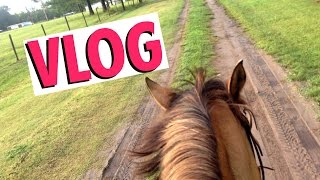 vlog   a day in my life   ride with me