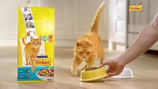 Baixar Friskies®, la marque préférée des chats !