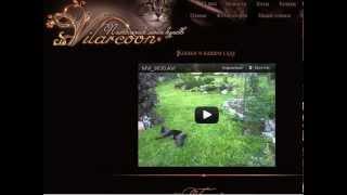 Вставка видео с youtube в Joomla 2.5, создание ссылок