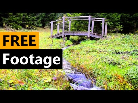 Nature Footage - FREE Stock Video Footage [Download Full HD]