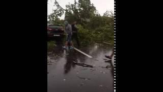 Тверская область, трасса М10. Дерево упало на машину