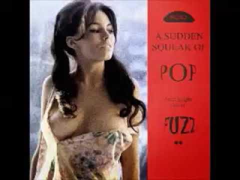 VA - A Sudden Squeak Of Pop With A Light Fizz Of Fuzz : 60's Garage Pop Psych Moody Music Collection