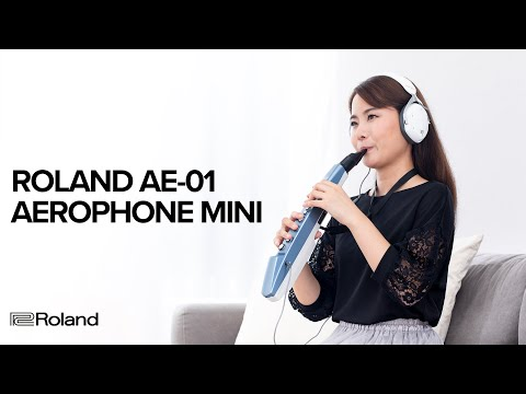 Roland's Aerophone mini is the digital wind instrument that anyone can learn to play | MusicRadar