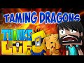 RIDING DRAGONS!! | Think's Lab Minecraft Mods [Minecraft Roleplay]