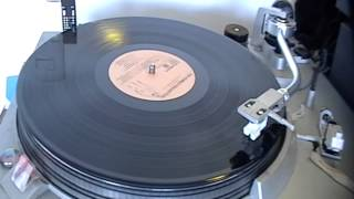 The Flies - House Of Love (vinilo)