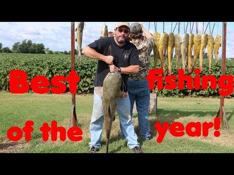 The Best Way To Catch Catfish! - Trotliners