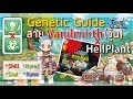 [ROM] ไกด์ Genetic สาย Vanilmirth(Homunculus) Skill Item Rune Stat!! (Genetic Guide) Ragnarok m