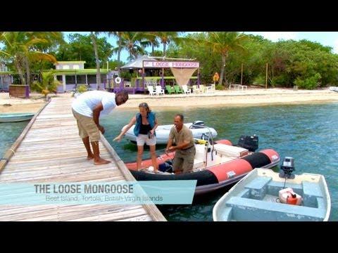 Backyard Scenes - The Loose Mongoose, Beef Island, British Virgin Islands, Caribbean