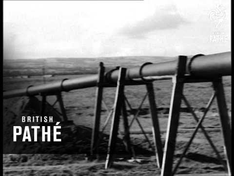 Land Reclamation At Dee Estuary (1947)