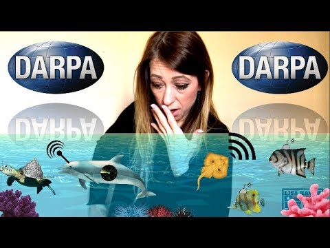 DARPA Initiates Genetically Modified 'Nephilim' Sea Creatures—What They Do Is Terrifying!