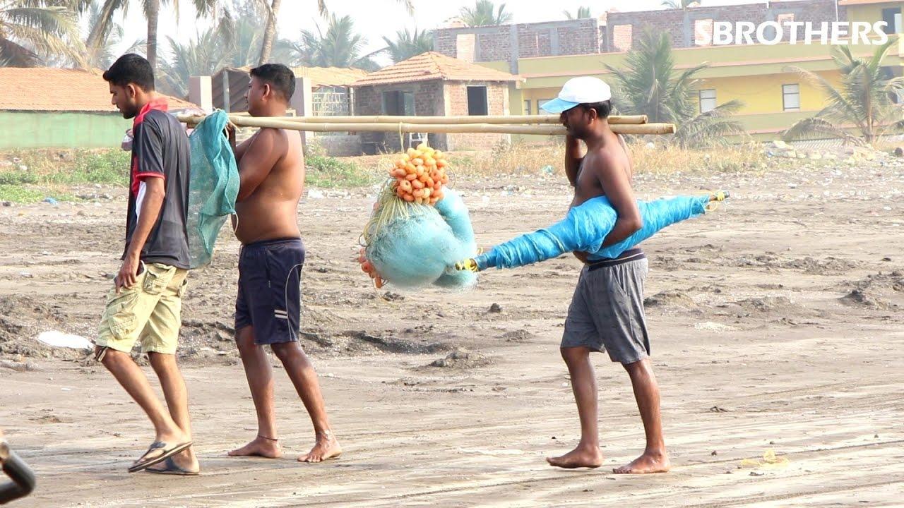 Net friendship in india