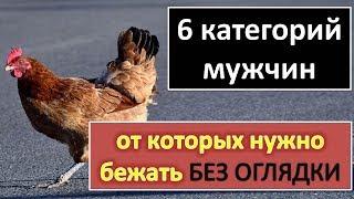 видео Категория: