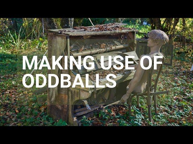 Making use of oddballs - Rough Cut Creativity
