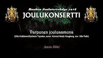 Raahen joulutervehdys 2018 - Varpunen jouluaamuna - Jaana Ilkko
