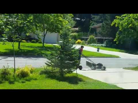 Wendy - Lawn Mowing Made Easier.. and Faster!