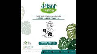 Jogja Plant Festival #aroid #jogjaplantfestival2021