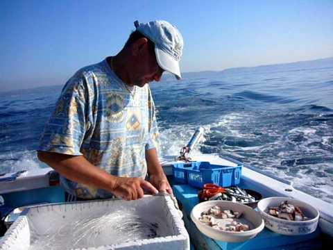 Le costume sur la pêche de flisa