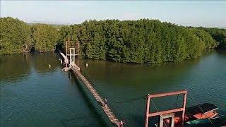 Peam Krosaob Natural resort - Mangrove forest - Koh Kong province, Boat trip to visit Prey Kong Kang