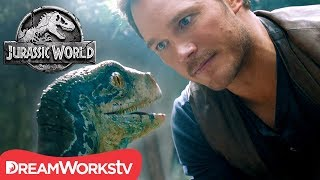 [COMPILATION] Owen and Blue&#39s Amazing Relationship JURASSIC WORLD
