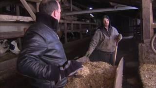 Centennial Pennsylvania Family Dairy Farm - America's Heartland