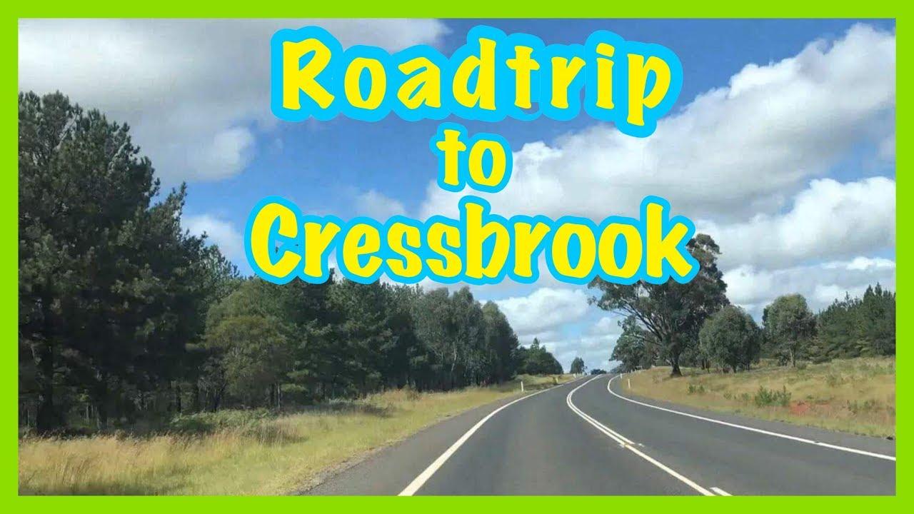 Roadtrip to Cressbrook Dam   Day Trip with Friends